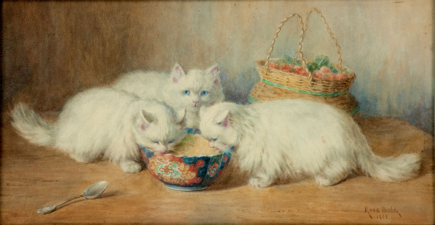 MINNIE ROSA BEBB WATERCOLOUR CATS KITTENS