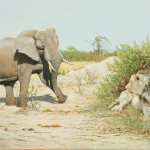 WILLIAM H BISHOP OIL PAINTING LION ELEPHANT AFRICA