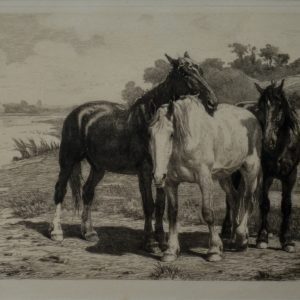 OTTO WEBER - ETCHING- HORSES BY A RIVER